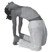 yoga-raga